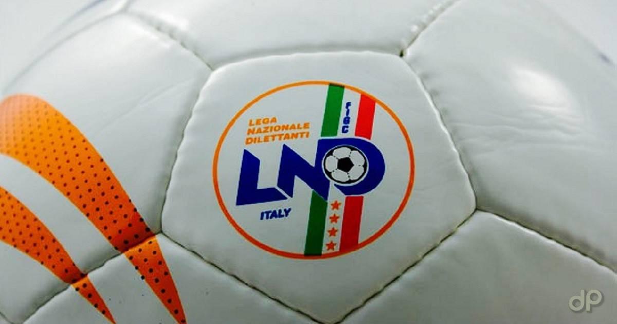 Dettaglio di un pallone da calcio Lnd