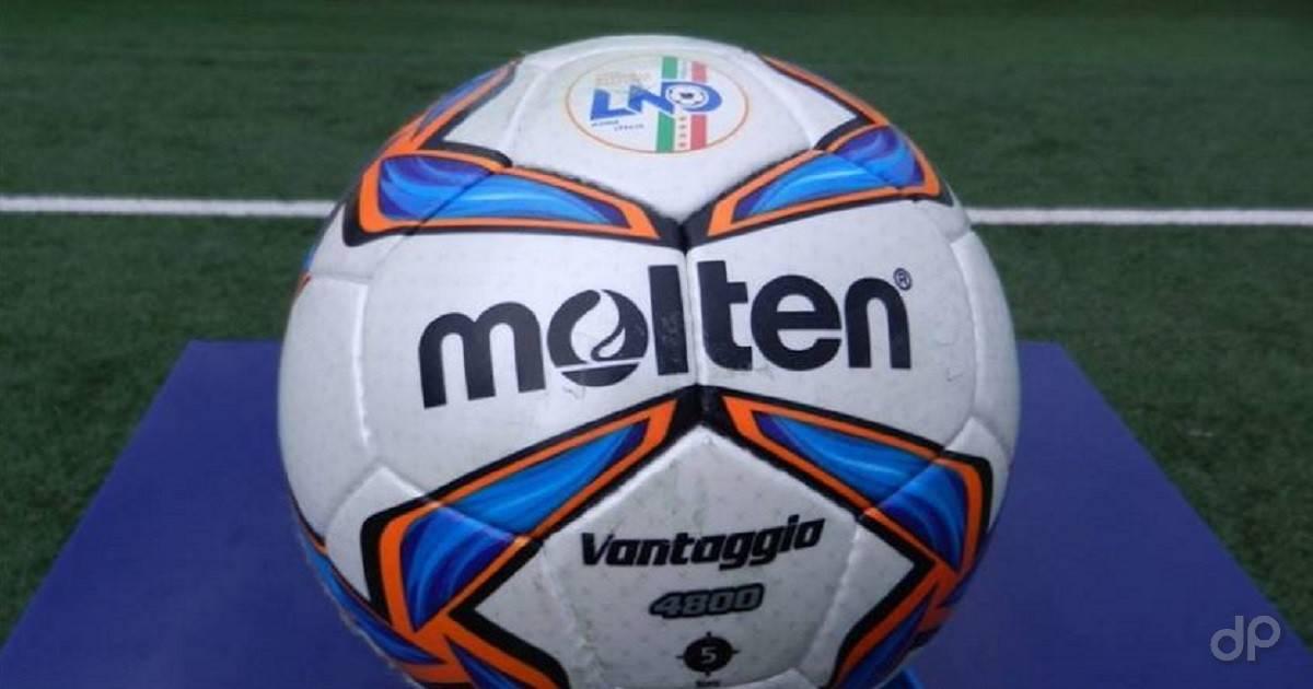 Primo piano di un pallone da calcio Lnd su erba
